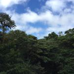 Photo of Monteverde Extremo Canopy Tour
