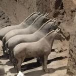 Horses and chariots, many more animal sculptures found too.