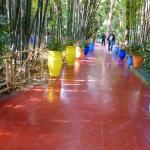 Beuatifully coloured pots along the pathways