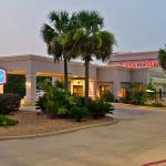 Hampton Inn Livingston
