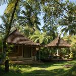 Prana Dewi Mountain Resort