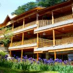 Mayflower Manali
