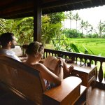Bali Eco Stay Rice Water Bungalows