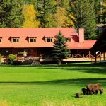 Photo of Tweedsmuir Park Lodge - Bella Coola Grizzly Bear Tours