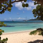 Fischer's Cove Beach Hotel Virgin Gorda
