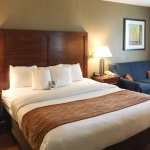 Comfort Inn Conference Center Bowie