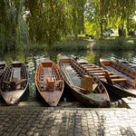 Public Punting Trips