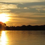 Wildlife Pantanal Tours