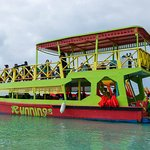 Cool Runnings Reef Tours