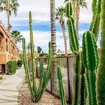 Holiday Inn Club Vacations Scottsdale Resort