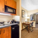 Comfort Suites North Dallas