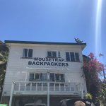 The Mousetrap Backpackers
