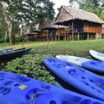 Muyuna Amazon Lodge