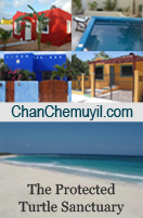 Chan Chemuyil at Xcacel Beach