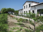 Photo of Agriturismo Ca&#39; Baccan Cavallino