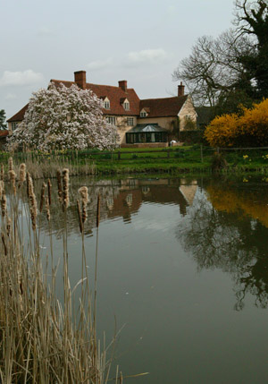 The Fountain House and Dedham Hall