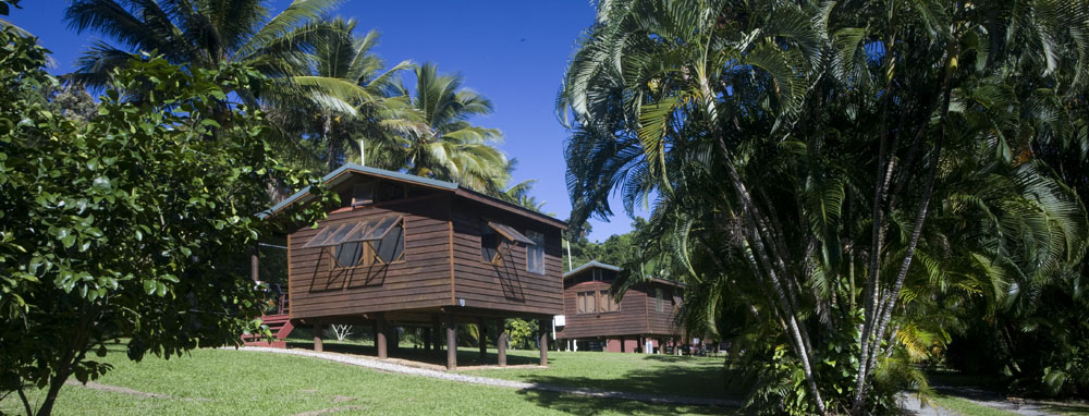Daintree Rainforest Bungalows