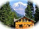Mt. Robson Mountain River Lodge