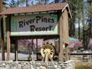 ‪River Pines Resort & Vacation Rentals‬