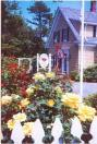 Photo of Rose Petal Bed and Breakfast Dennis Port