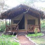 Migunga Forest Camp