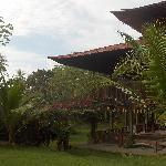 Guaria de Osa Ecolodge