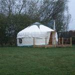 Walnut Yurt