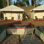 Jungle Camp ranakpur