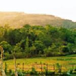 Elephant Valley Eco Farm Hotel