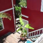 Carioca Easy Hostel