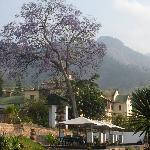 Annie's Lodge Zomba
