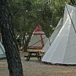 Camping Es Cana
