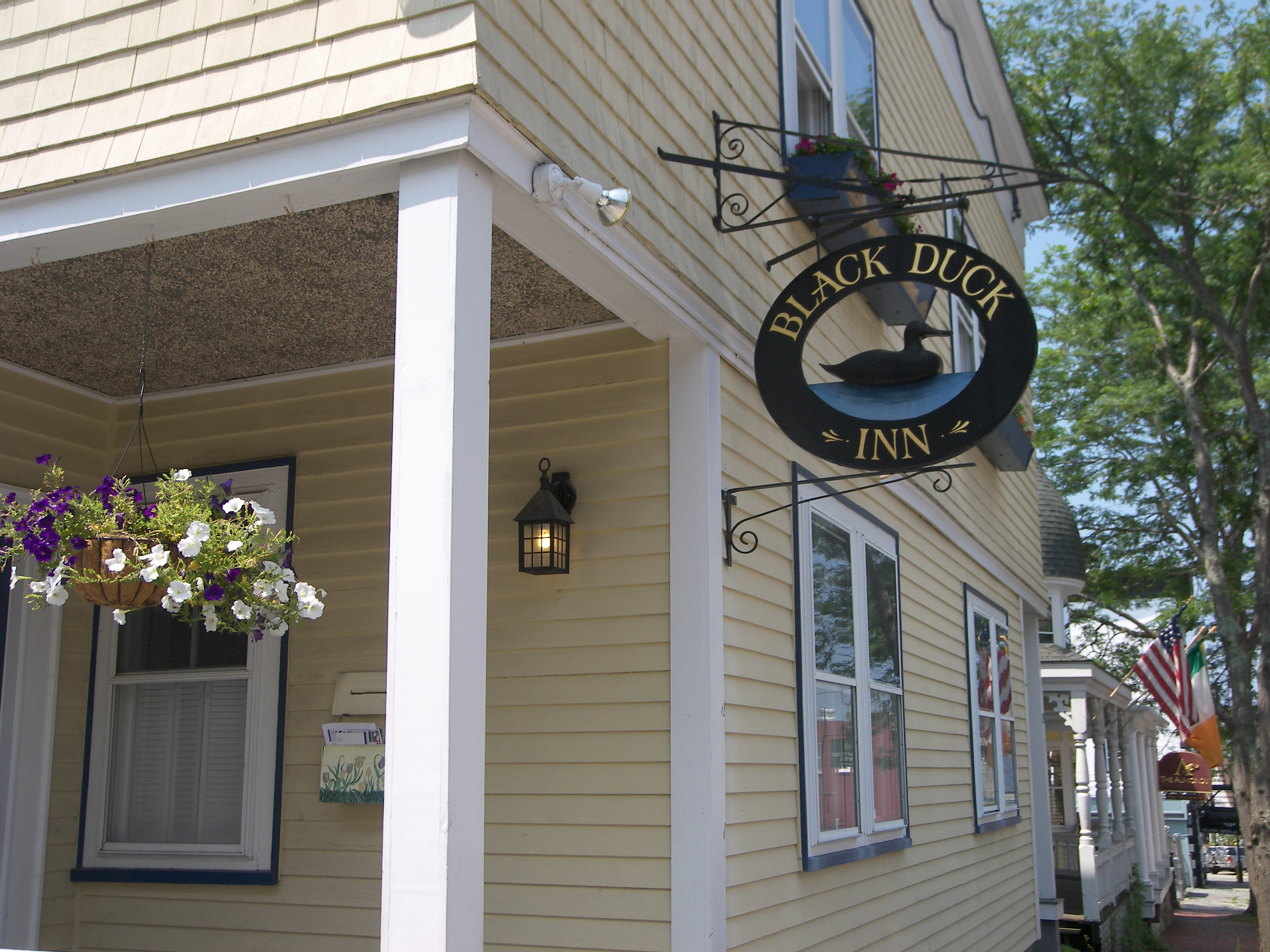 Black Duck Inn