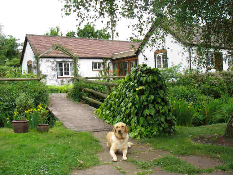 Croft Cottage B&B