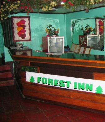Forest Inn Baguio
