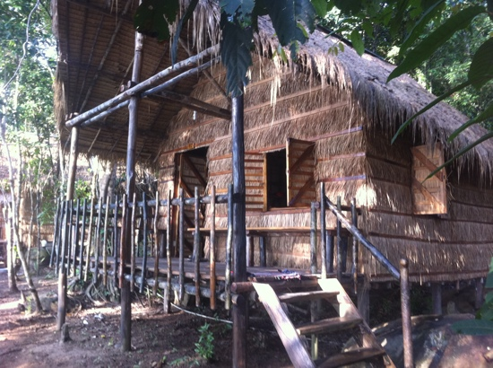 Tree House Bungalows