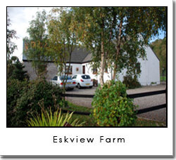 Eskview Farm B&B