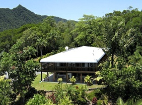 Daintree Manor B&B