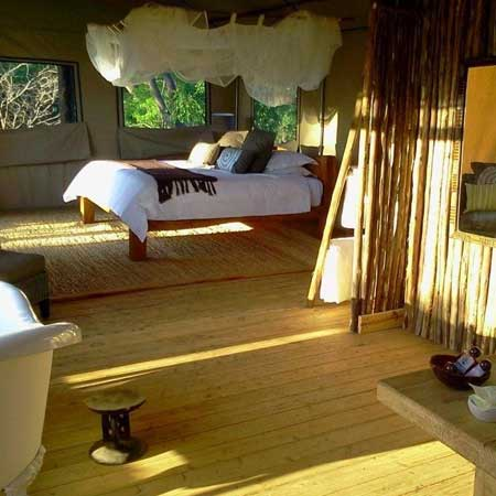 Miombo Safari Camp