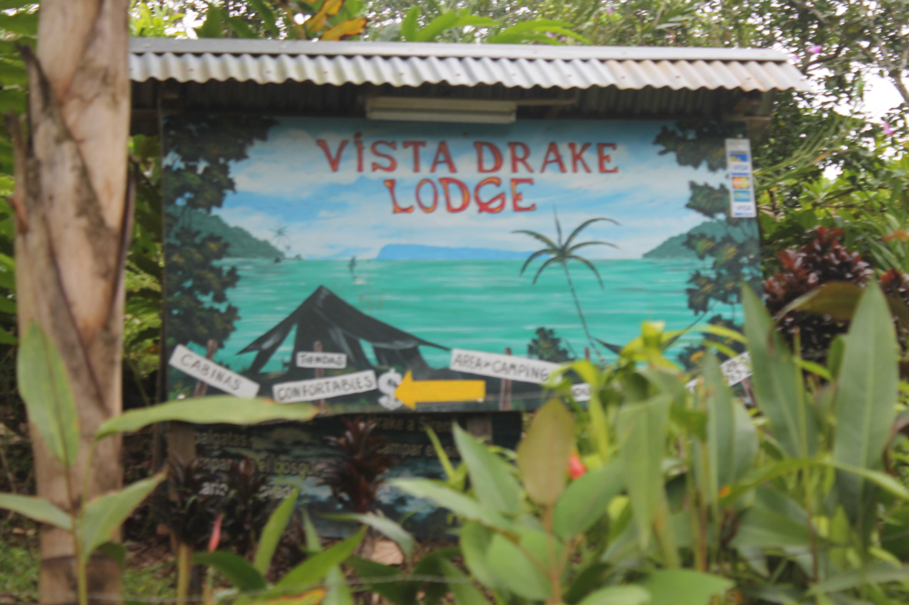 Vista Drake Lodge