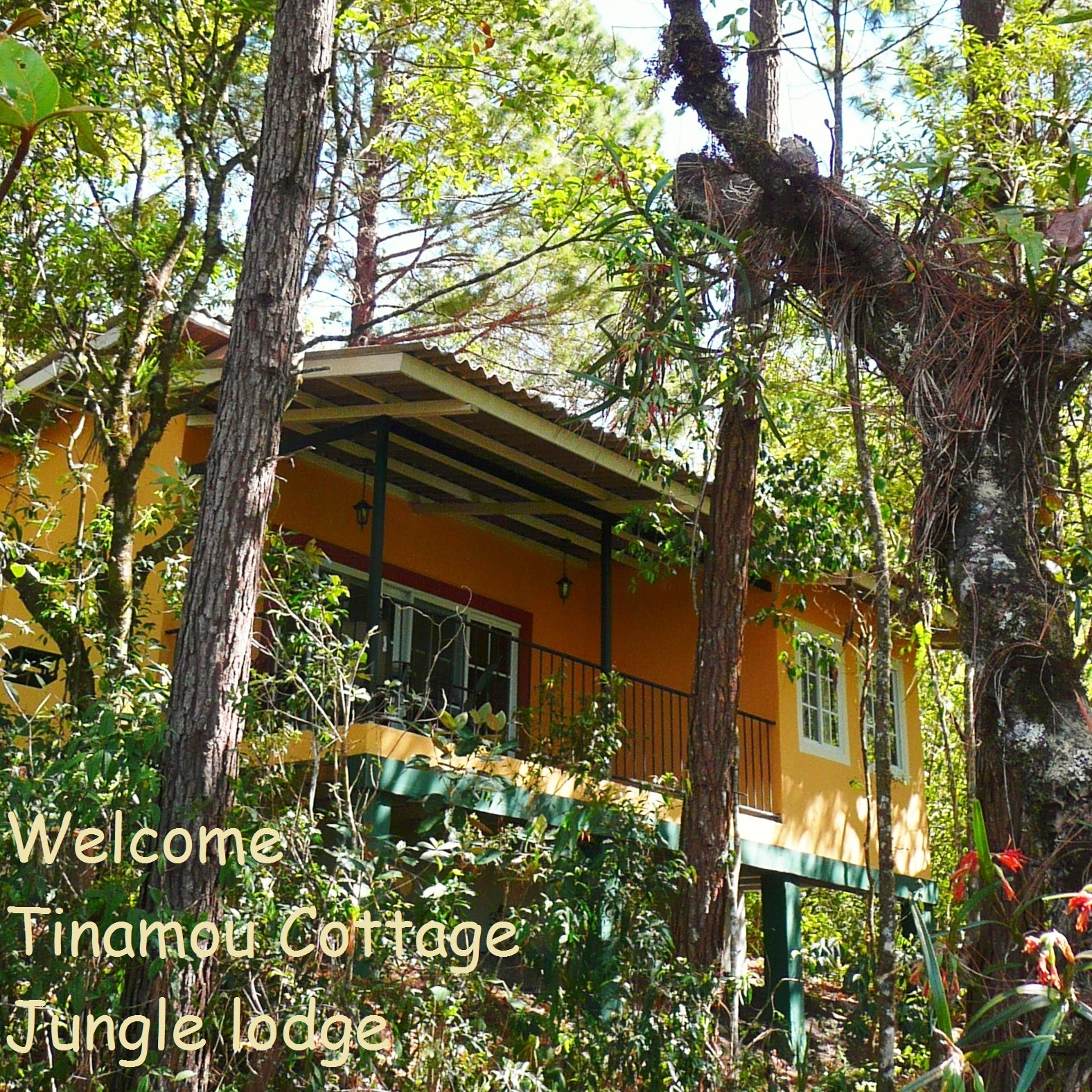 Tinamou Cottages