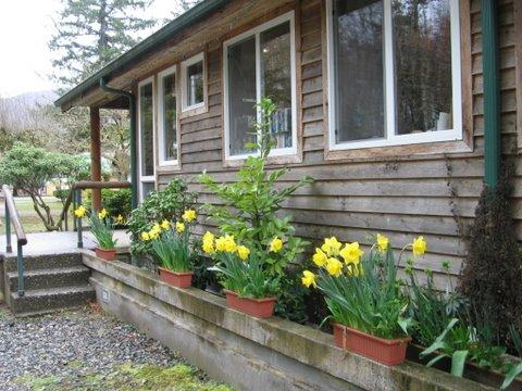 Skagit River Resort / Clark's Cabins