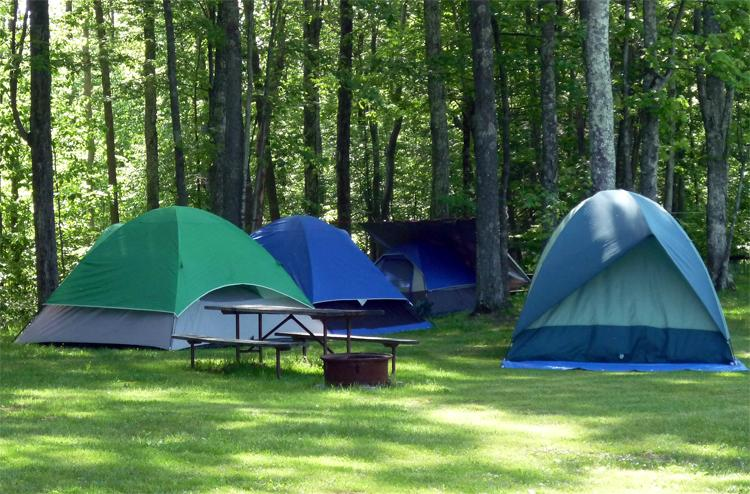 Ray's Campground