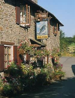 Dolphin Inn