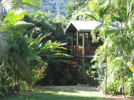 Cairns Rainforest Studios