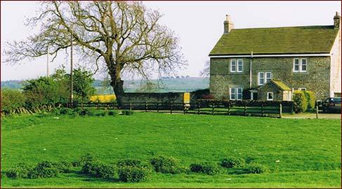 Lily Hill Farm