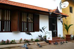 Oy's Homestay