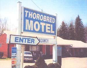 Thorobred Motel