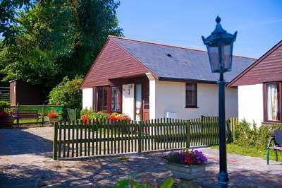 Blackberry & Bramblewood Cottages