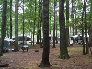 ‪Raccoon Holler Campground‬